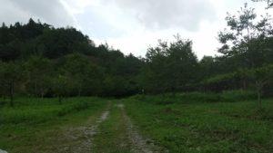 吉岡銅山跡