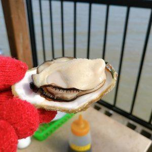 勇栄丸 牡蠣